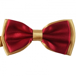 Gentlemen Polyester Yarn Bow Tie 1