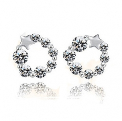 Lovely Flower Crystal 925 Sterling Silver Earrings