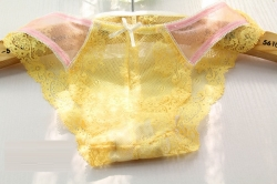 Sexy Lace Low Waist Panty YELLOW Size M